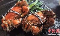 南闸北簖(duàn) 吃蟹别再只知道阳澄湖啦!