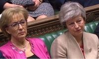 梅姨已穷途末路?英下院领袖辞职 因与首相有分歧