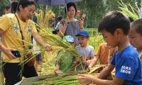 """福州多地举行首届""""中国农民丰收节""""庆祝活动"""