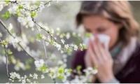 春季易过敏?这几种食物帮助您有效预防