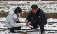 武邑:与农业部门联合开展雪后麦田墒情调查
