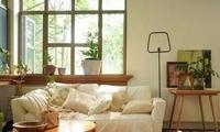 房主在墙壁上开8个窗户 粉丝观光团天天想打卡参观