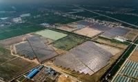 中国能建江苏电建一公司承建连云港灌云农光互补项目顺利并网