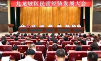 九龙坡书记周勇:要培植民营经济高质量新发展的沃土
