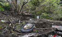 美国纽约州街头婚礼豪车突发车祸 至少20人遇难()