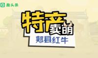动画扶贫:中国的雪花牛肉 郏县的脱贫神器