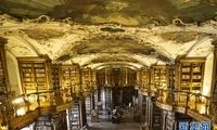 跨越千年的瑞士圣加仑修道院图书馆