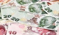 """""""一起挫败诡计"""" 埃尔多安呼吁土耳其民众换钱挺本币"""