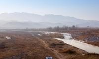 晋冀古道上的大梁江和村里的大黄狗