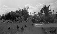 最危险的任务 在坦克支援下美军小队入林搜索北越游击队