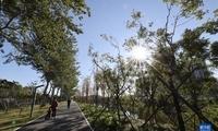 北京永定河引水渠景观提升工程完工