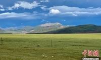 青海:科技提升草原生态修复能力 促进生产发展