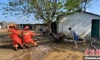 湖北红安:黄牛跌入深井 消防员灌水巧救牛